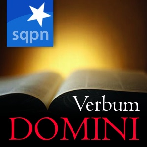 Verbum Domini Podcast Is Ending