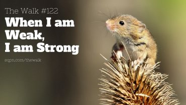 WLK122: When I am Weak, I am Strong