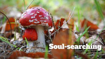 WLK123: Soul-searching