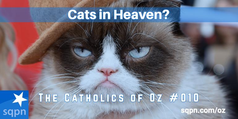 Cats in Heaven?