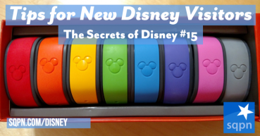 Tips for New Disney Visitors