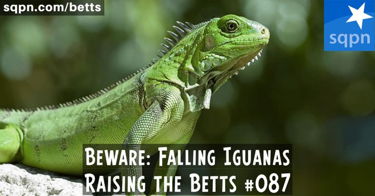 Beware: Falling Iguanas