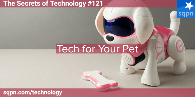 Tech for Your Pet
