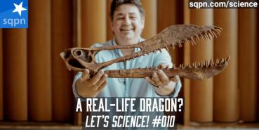 A Real-Life Dragon?